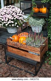 autumn cozy home decorations still with wicker basket