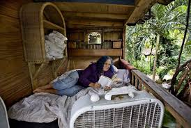miami dade orders woman to tear down the tree house where she
