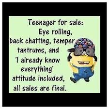 Teenager Meme - minion meme teenager for sale 4 x4 flexible fridge magnet ebay