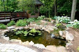 what is an ecosystem pond u2013 r u0026a water features and landscaping