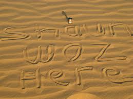 thar desert shaun hoofing around in the thar desert ageholdsnobounds