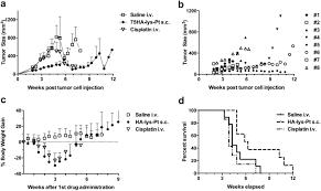 hyaluronan lysine cisplatin drug carrier for treatment of