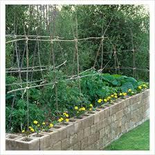 74 best gardening raised beds images on pinterest gardening