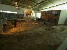 40 000 blood brings mammoth cloning closer