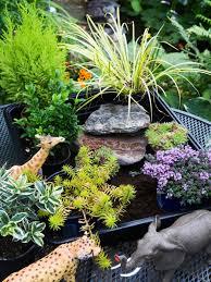 gardening picture create a miniature garden for kids gardening for kids hgtv