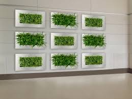 framed wall planter indoor vertical garden suite plants