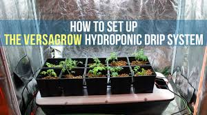 how to set up a hydroponic drip system for indoor gardening