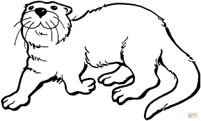otter 5 coloring page free printable coloring pages