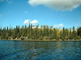 75 Square Meters To Feet by Binta Lake Farm Wilderness Estates Lot 10