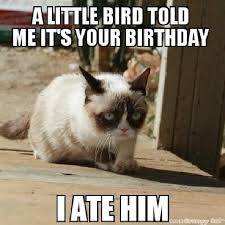 Grumpy Cat Meme Creator - grumpy cat meme grumpy cat pictures and angry cat meme