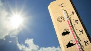 Termometer Kandang Ayam mengatur suhu ruangan yang ideal di dalam kandang hobiternak