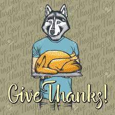 vector illustration of happy thanksgiving day husky concept