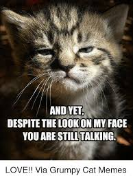 Grumpy Face Meme - 25 best memes about grumpy grumpy memes