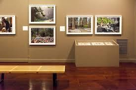 exhibition surveys work of modernist landscape architect lawrence