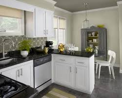kitchen paint colors with white cabinets and black appliances