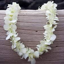 hawaiian leis orchid leis pacific leis