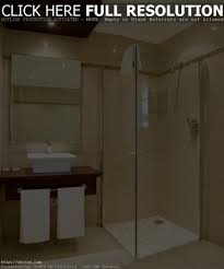 bathroom ideas shower only small bathroom designs shower only best bathroom decoration