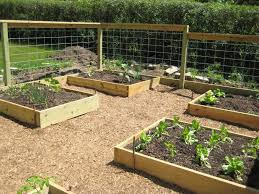 raised bed garden design for limited land garden design vegetable