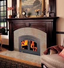 High Efficiency Fireplaces by High Efficiency Fireplace Insert Wood Burning Home Design Ideas