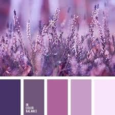 69 best l shades of purple paint colours l images on pinterest