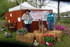 belgian sheepdog national specialty 2018 torrent riverstone dog training u2013 top quality competitive