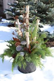 winter container display white branches and green