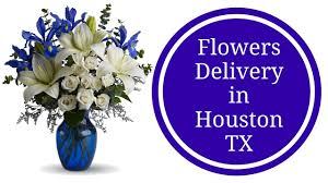 flower delivery houston flowers delivery houston tx new baby boy flowers in