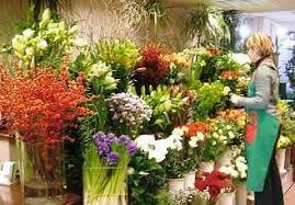 florists in florists in aberdeen for the best flower decorations nut brown hobbies
