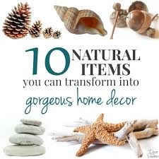 10 natural items you can craft into home decor decor by the seashore