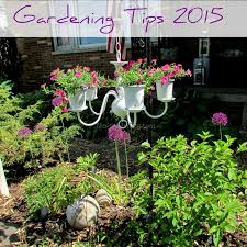 Home Garden Design Pictures Best Garden Design Ideas Landscaping Garden Plants Gardening