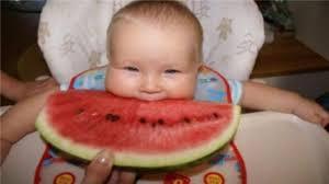 imagenes graciosas videos videos graciosos de bebés vídeo dailymotion