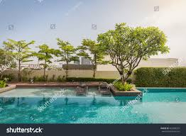 two beach bench under trees shadow stock photo 453328525