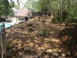 triyae com u003d xeriscape small backyard various design inspiration