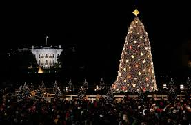 all about the 2017 national tree lighting washington