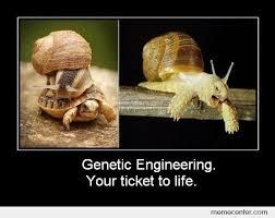 Meme Gene - genetic engineering your ticket to life by ben meme center