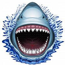 shark jaws attack by bluedarkat graphicriver