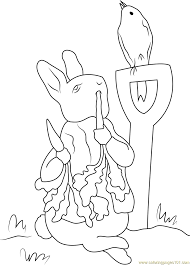 peter rabbit in farm coloring page free peter rabbit coloring