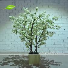 japanese bonsai tree japanese bonsai tree suppliers and