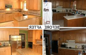 Mid Century Kitchen Cabinets Home Depot Kitchen Cabinet Refacing Reviews Comfy Home Design