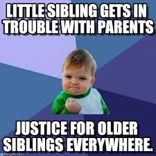 Memes That Are Actually Funny - 15 sibling memes to share with your brothers sisters on national