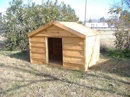 Large Igloo Dog House Large Wooden Dog House Custom Ac Heated Insulated Dog House