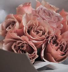 vlyn floral design studio