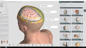 Anatomy Videos Free Download Complete Anatomy Download