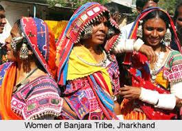 tribal society
