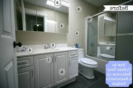 Cabinet Painting Ideas Upgrade Vanity Doors How To Paint Bathroom