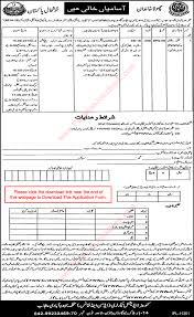 family welfare worker jobs in punjab population welfare department