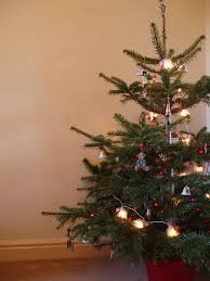 How To Put Christmas Lights On A Tree by Photo Of Traditional Christmas Tree Free Christmas Images