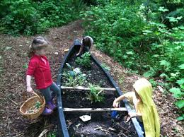 into the woods outdoor and nature based preschools in seattle