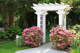 Garden Arbor Tips Landscaping Network - Backyard arbor design ideas