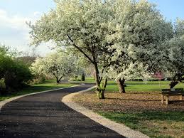 department of parks u0026 recreation waynesboro va official website